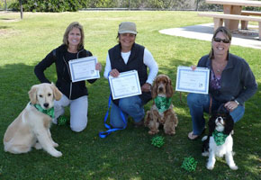 Beginner Group Obedience Lessons