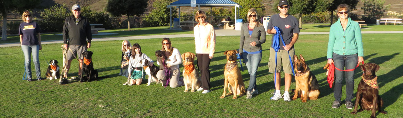 dog_trainer_shannon_4